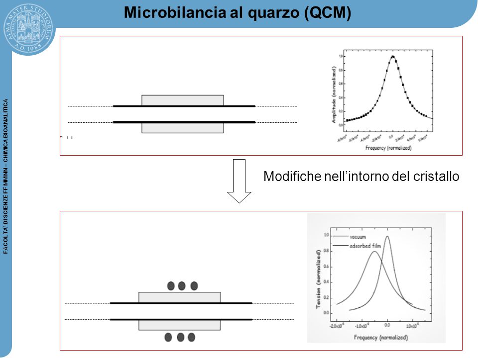 38 FACOLTA' DI SCIENZE FF MM NN – CHIMICA BIOANALITICA Microbilancia al quarzo (QCM) Modifiche nell'intorno del cristallo