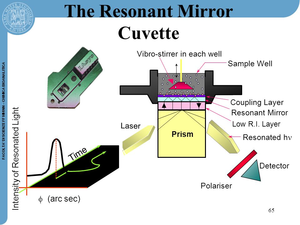 65 FACOLTA' DI SCIENZE FF MM NN – CHIMICA BIOANALITICA The Resonant Mirror Cuvette  (arc sec) Intensity of Resonated Light Time Vibro-stirrer in each well Prism Sample Well Resonant Mirror Low R.I.