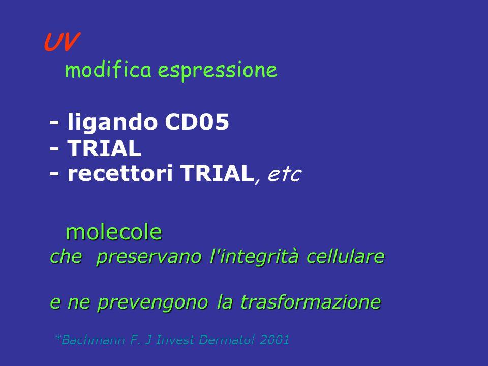 UV modifica espressione - ligando CD05 - TRIAL - recettori TRIAL, etc *Bachmann F. J Invest Dermatol 2001 molecole molecole che preservano l'integrità
