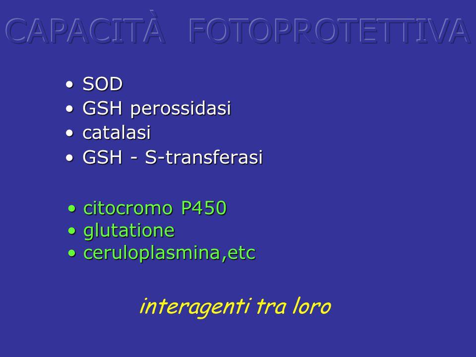 SODSOD GSH perossidasiGSH perossidasi catalasicatalasi GSH - S-transferasiGSH - S-transferasi interagenti tra loro citocromo P450 citocromo P450 gluta