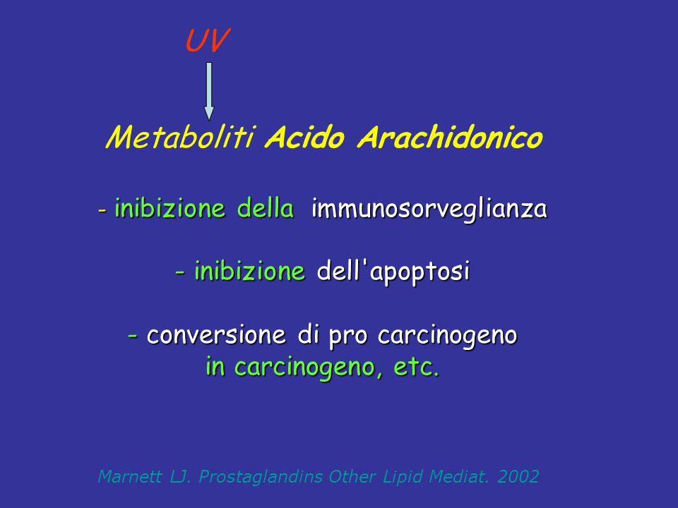 - inibizione della immunosorveglianza - inibizione dell'apoptosi - conversione di pro carcinogeno in carcinogeno, etc. Metaboliti Acido Arachidonico -