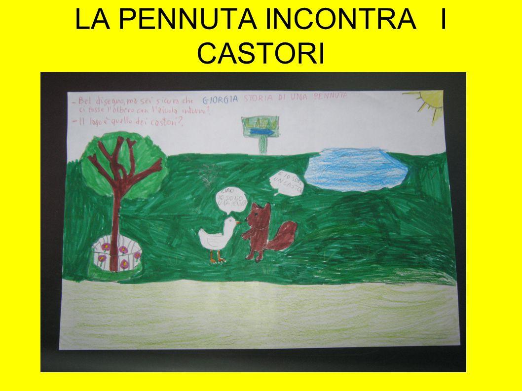 LA PENNUTA INCONTRA I CASTORI