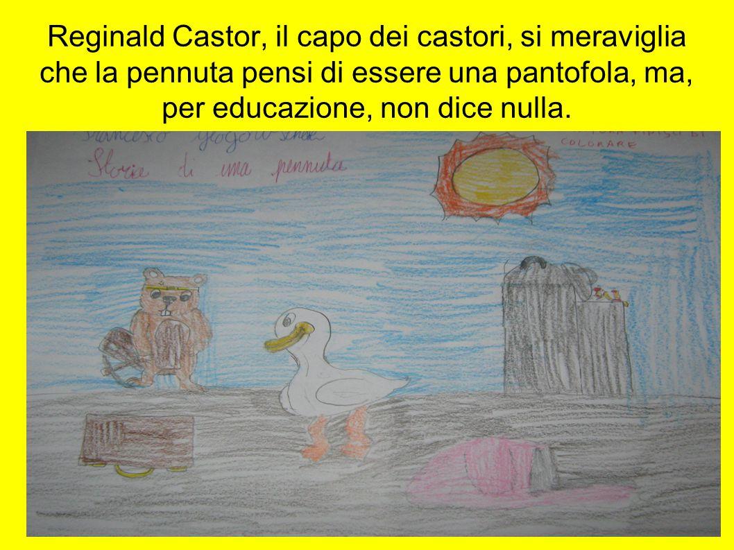 Reginald Castor, il capo dei castori, si meraviglia che la pennuta pensi di essere una pantofola, ma, per educazione, non dice nulla.