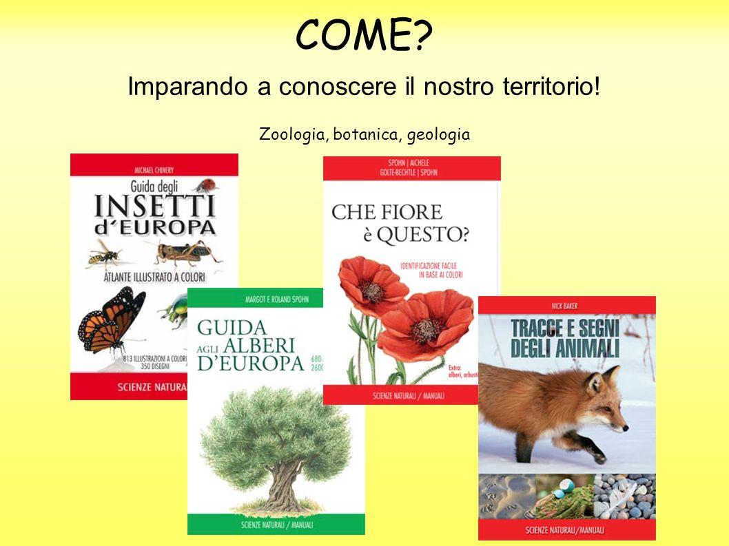 COME Imparando a conoscere il nostro territorio! Zoologia, botanica, geologia