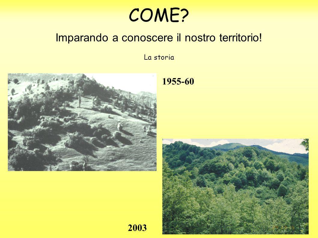 COME Imparando a conoscere il nostro territorio! 1955-60 2003 La storia