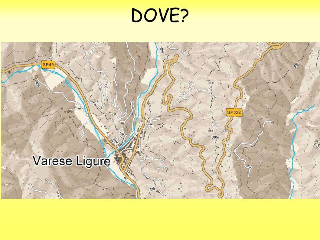 DOVE?