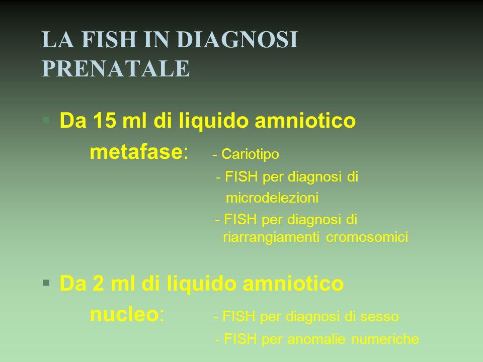 LA FISH IN DIAGNOSI PRENATALE §Da 15 ml di liquido amniotico metafase: - Cariotipo - FISH per diagnosi di microdelezioni - FISH per diagnosi di riarra