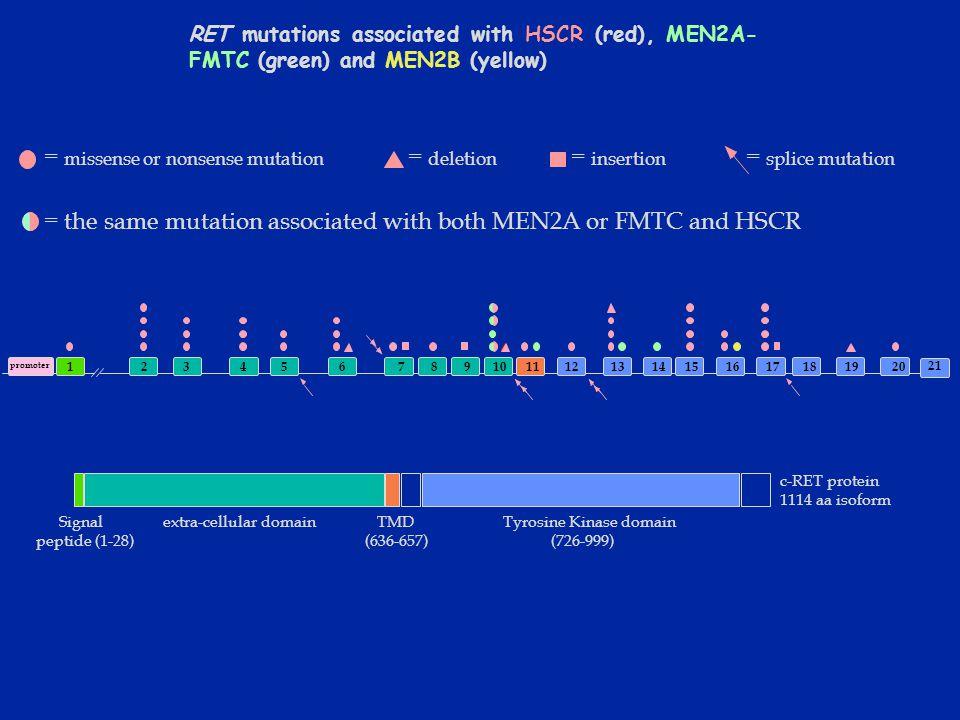Mosaicismo su villi coriali Tipo I: le cellule anomale sono riscontrate solo a livello del citotrofoblasto con il metodo diretto Tipo II: meno frequente, riscontrate solo a livello della componente mesenchimale del villo (coltura a lungo termine) Tipo III: presente sia nel citotrofloblasto che nel mesenchima del villo.