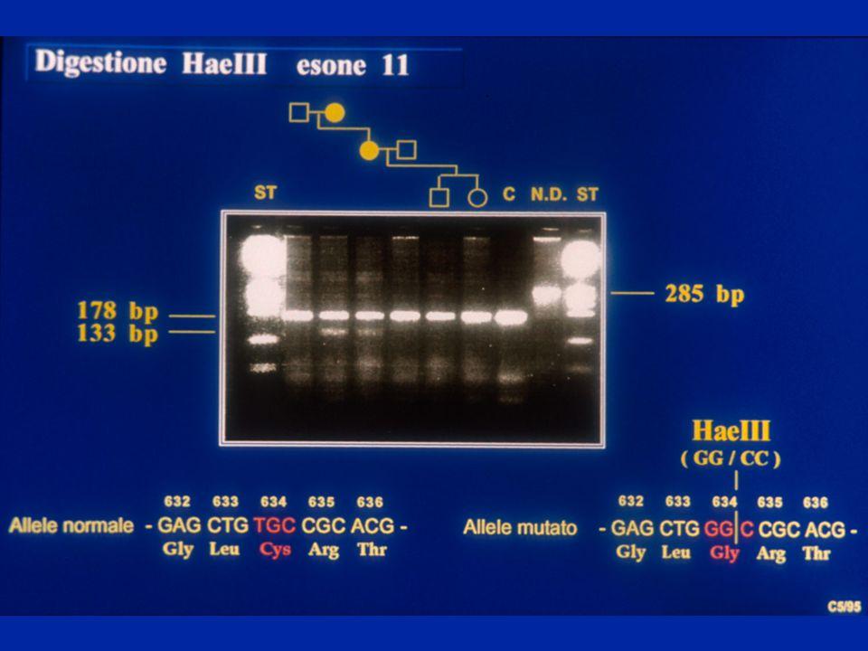 Prelievo di cellule fetali circolanti: eritrociti fetali nucleati (1/50.000 cell materne)Prelievo di cellule fetali circolanti: eritrociti fetali nucleati (1/50.000 cell materne) Prelievo di cellule fetali del trofoblasto presenti nel canale cervicalePrelievo di cellule fetali del trofoblasto presenti nel canale cervicale