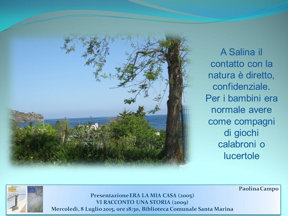 A Salina il contatto con la natura è diretto, confidenziale.