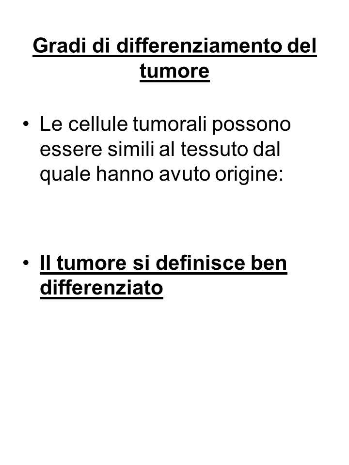 Gradi di differenziamento del tumore Le cellule tumorali possono essere simili al tessuto dal quale hanno avuto origine: Il tumore si definisce ben di