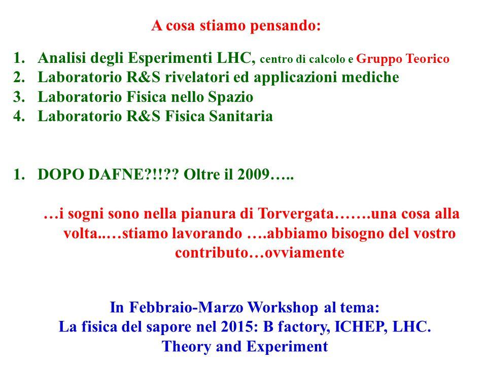 1.Analisi degli Esperimenti LHC, centro di calcolo e Gruppo Teorico 2.Laboratorio R&S rivelatori ed applicazioni mediche 3.Laboratorio Fisica nello Spazio 4.Laboratorio R&S Fisica Sanitaria 1.DOPO DAFNE !! .
