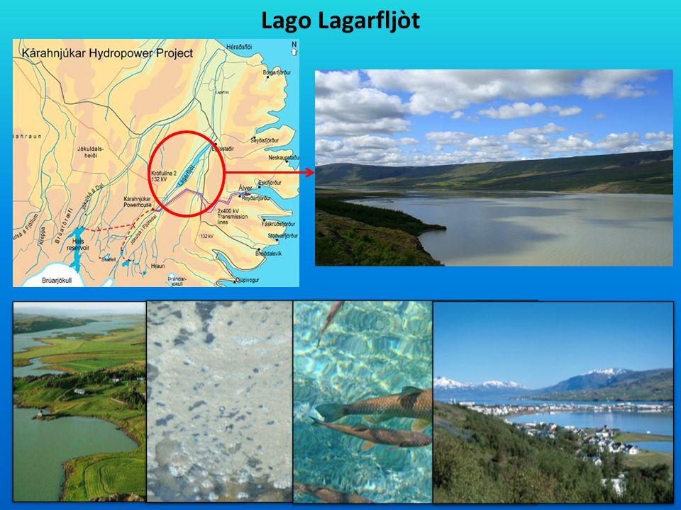 Lago Lagarfljòt