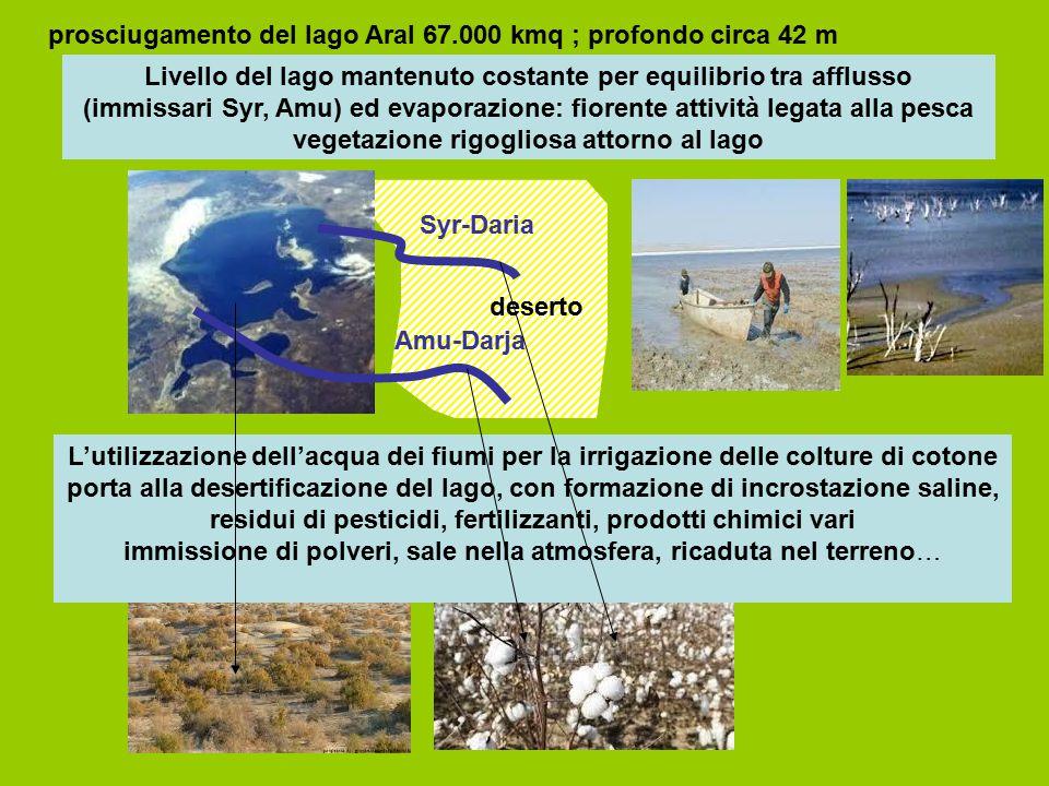prosciugamento del lago Aral 67.000 kmq ; profondo circa 42 m Livello del lago mantenuto costante per equilibrio tra afflusso (immissari Syr, Amu) ed