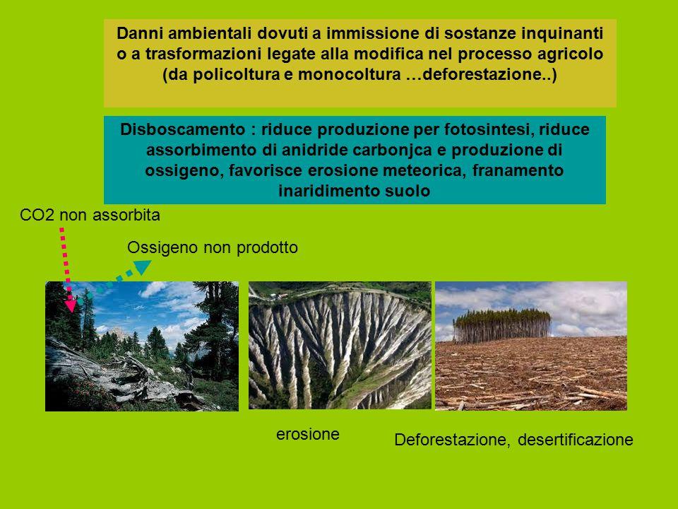 Disboscamento : riduce produzione per fotosintesi, riduce assorbimento di anidride carbonjca e produzione di ossigeno, favorisce erosione meteorica, f