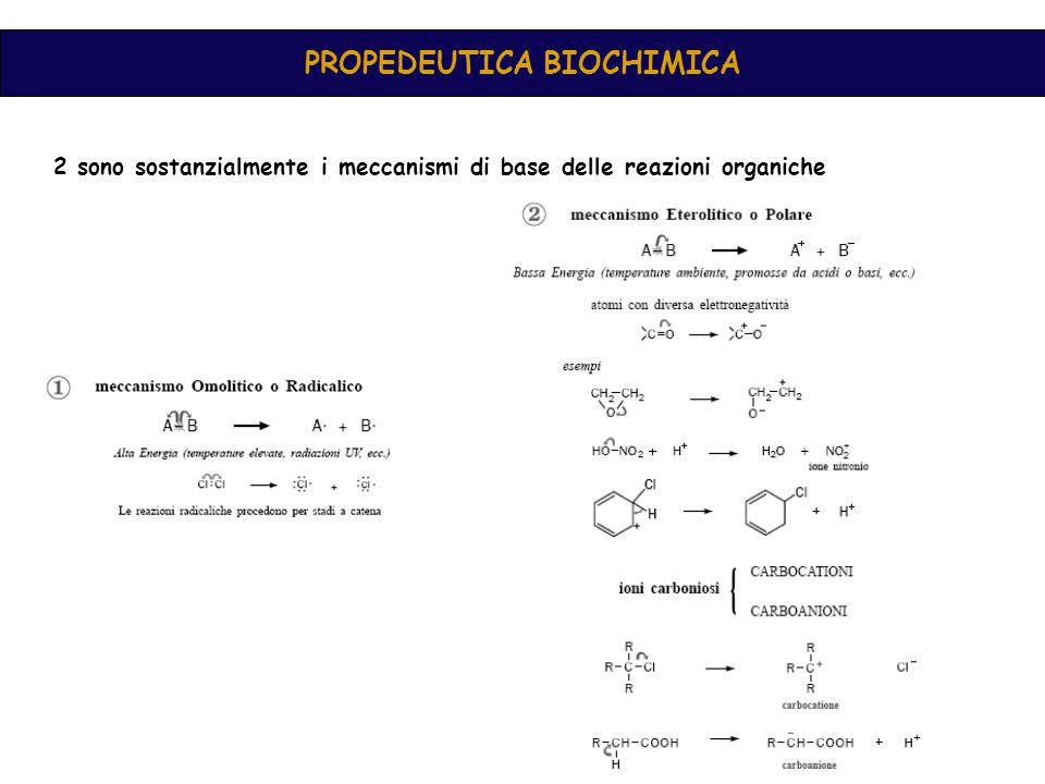 PROPEDEUTICA BIOCHIMICA 2 sono sostanzialmente i meccanismi di base delle reazioni organiche