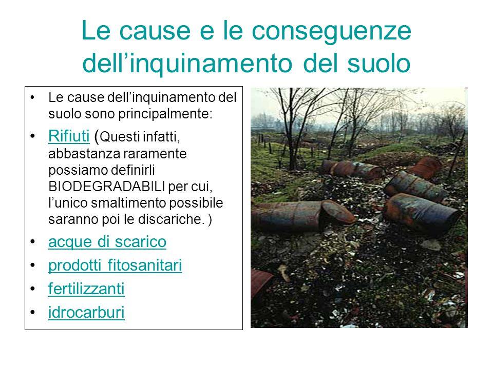 Le cause e le conseguenze dell'inquinamento del suolo Le cause dell'inquinamento del suolo sono principalmente: Rifiuti ( Questi infatti, abbastanza r