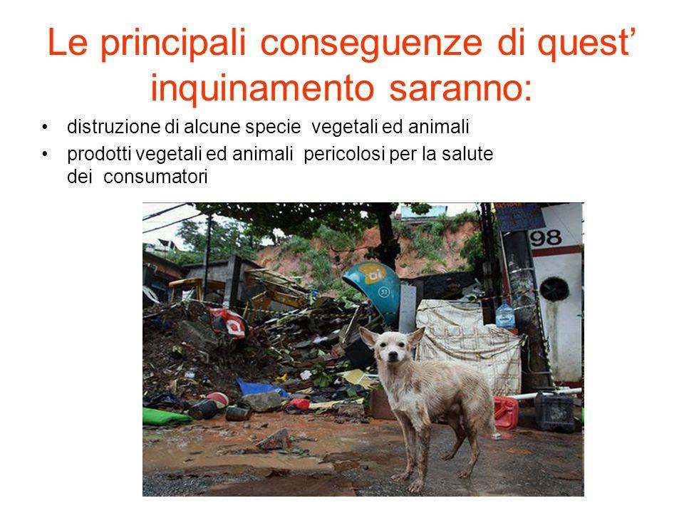 Le principali conseguenze di quest' inquinamento saranno: distruzione di alcune specie vegetali ed animali prodotti vegetali ed animali pericolosi per