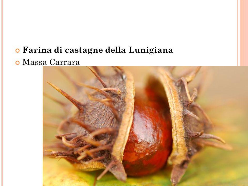 Farina di castagne della Lunigiana Massa Carrara