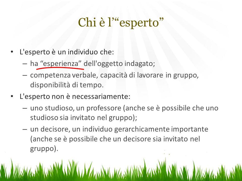 """L'esperto è un individuo che: – ha """"esperienza"""" dell'oggetto indagato; – competenza verbale, capacità di lavorare in gruppo, disponibilità di tempo. L"""