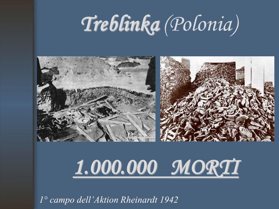 Treblinka Treblinka (Polonia) 1.000.000 MORTI 1° campo dell'Aktion Rheinardt 1942