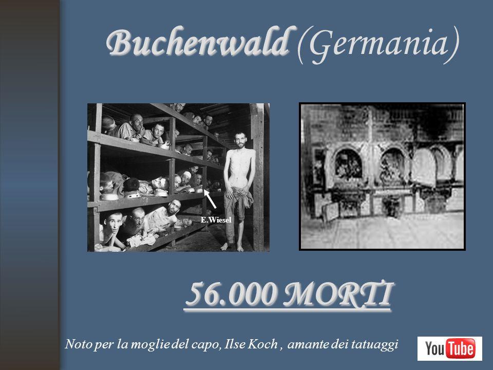 Buchenwald Buchenwald (Germania) 56.000 MORTI Noto per la moglie del capo, Ilse Koch, amante dei tatuaggi E.Wiesel