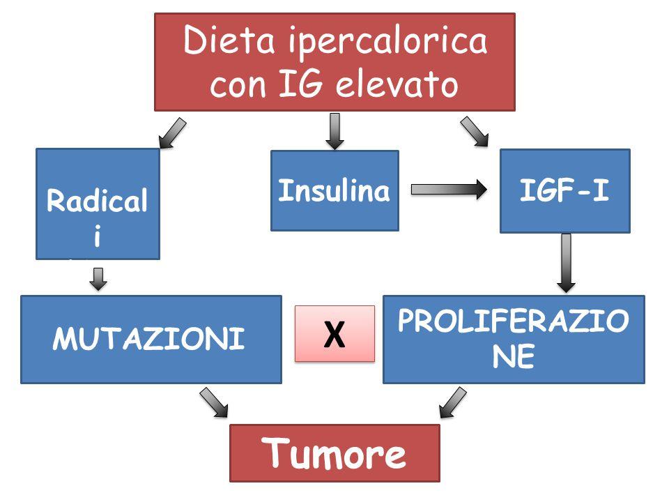 Dieta ipercalorica con IG elevato Radical i liberi Insulina IGF-I MUTAZIONI X X PROLIFERAZIO NE Tumore