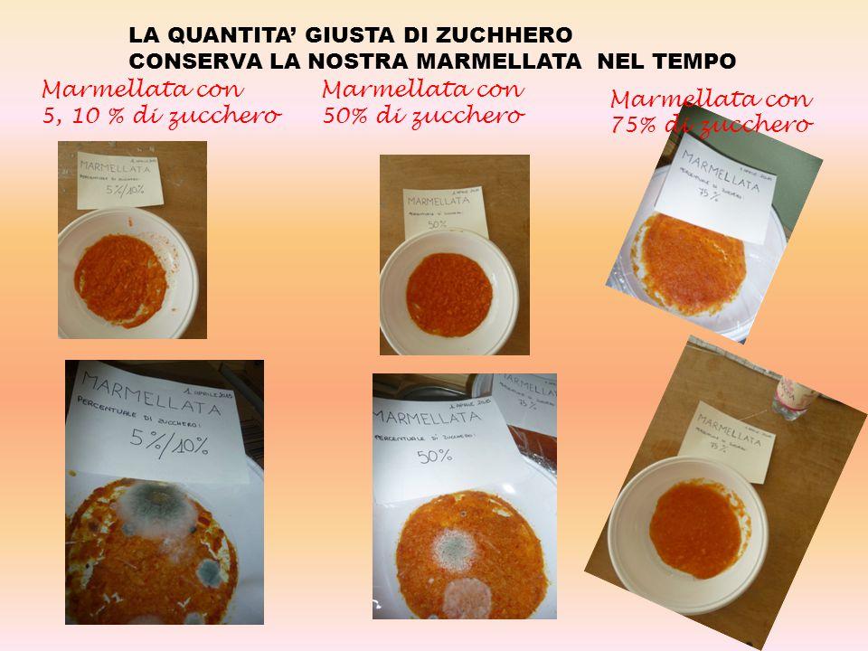 Marmellata con 75% di zucchero Marmellata con 50% di zucchero Marmellata con 5, 10 % di zucchero LA QUANTITA' GIUSTA DI ZUCHHERO CONSERVA LA NOSTRA MARMELLATA NEL TEMPO