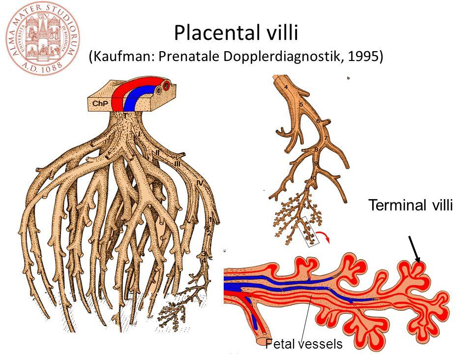 Placenta previa: diagnosi Ecografia La diagnosi è spesso posta in pazienti asintomatiche da un esame eseguita routinariamente nel corso della gravidanza