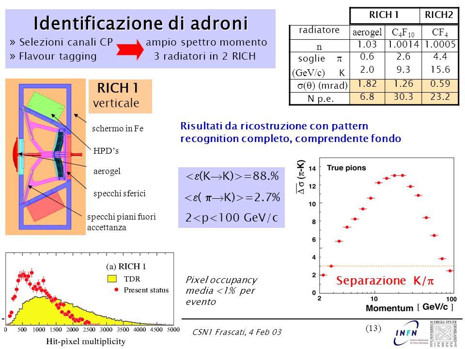 Marta CalviCSN1 Frascati, 4 Feb 03 (13) Identificazione di adroni Identificazione di adroni » Selezioni canali CP ampio spettro momento » Flavour tagg