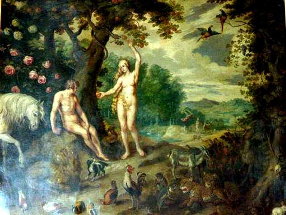 Dal libro della Gènesi Gen 3,9-15.20 1 Dopo che l uomo ebbe mangiato del frutto dell albero, 2 il Signore Dio lo chiamò e gli disse: «Dove sei?».