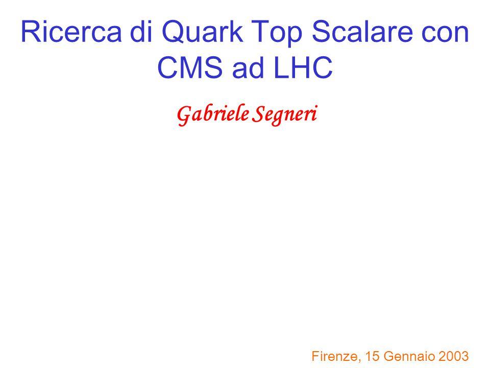 Ricerca di Quark Top Scalare con CMS ad LHC Gabriele Segneri Firenze, 15 Gennaio 2003