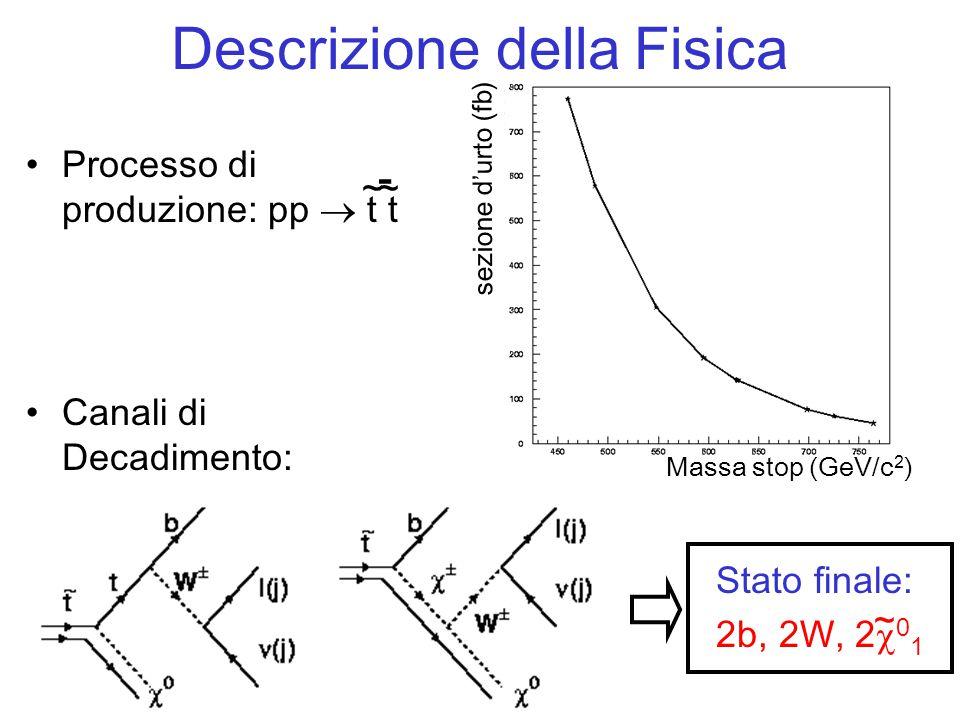 Processo di produzione: pp  t t Descrizione della Fisica ~~ - Massa stop (GeV/c 2 ) sezione d'urto (fb) Canali di Decadimento: Stato finale: 2b, 2W, 2  0 1 ~