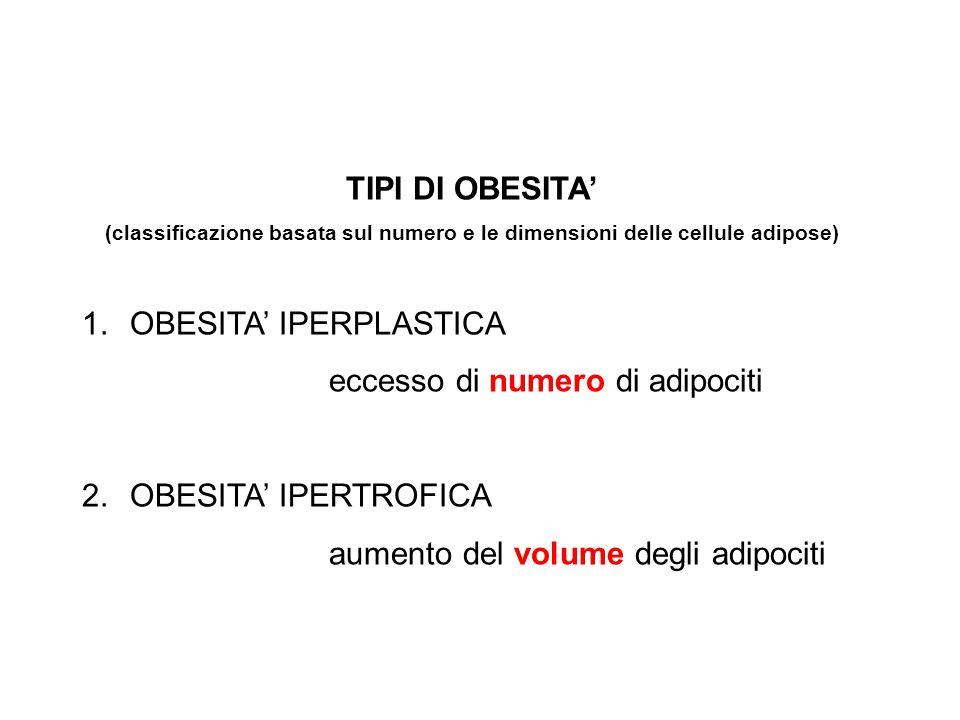 TIPI DI OBESITA' (classificazione basata sul numero e le dimensioni delle cellule adipose) 1.OBESITA' IPERPLASTICA eccesso di numero di adipociti 2.OB