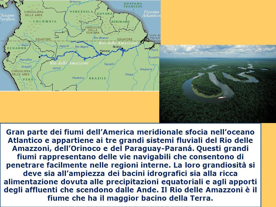 Gran parte dei fiumi dell'America meridionale sfocia nell'oceano Atlantico e appartiene ai tre grandi sistemi fluviali del Rio delle Amazzoni, dell'Or