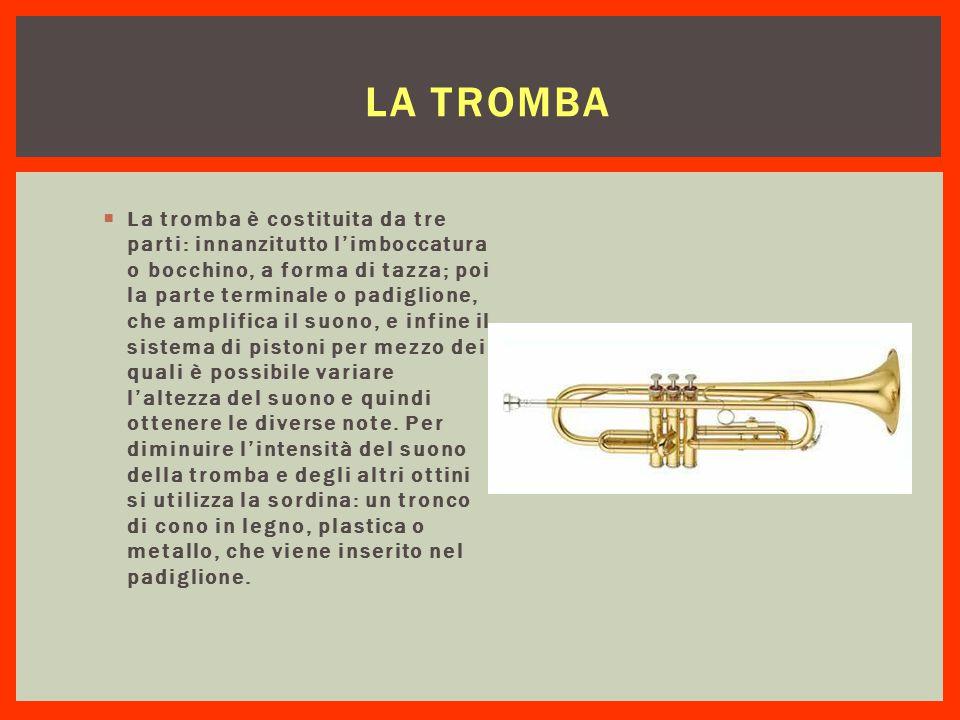 LA TROMBA  La tromba è costituita da tre parti: innanzitutto l'imboccatura o bocchino, a forma di tazza; poi la parte terminale o padiglione, che amp