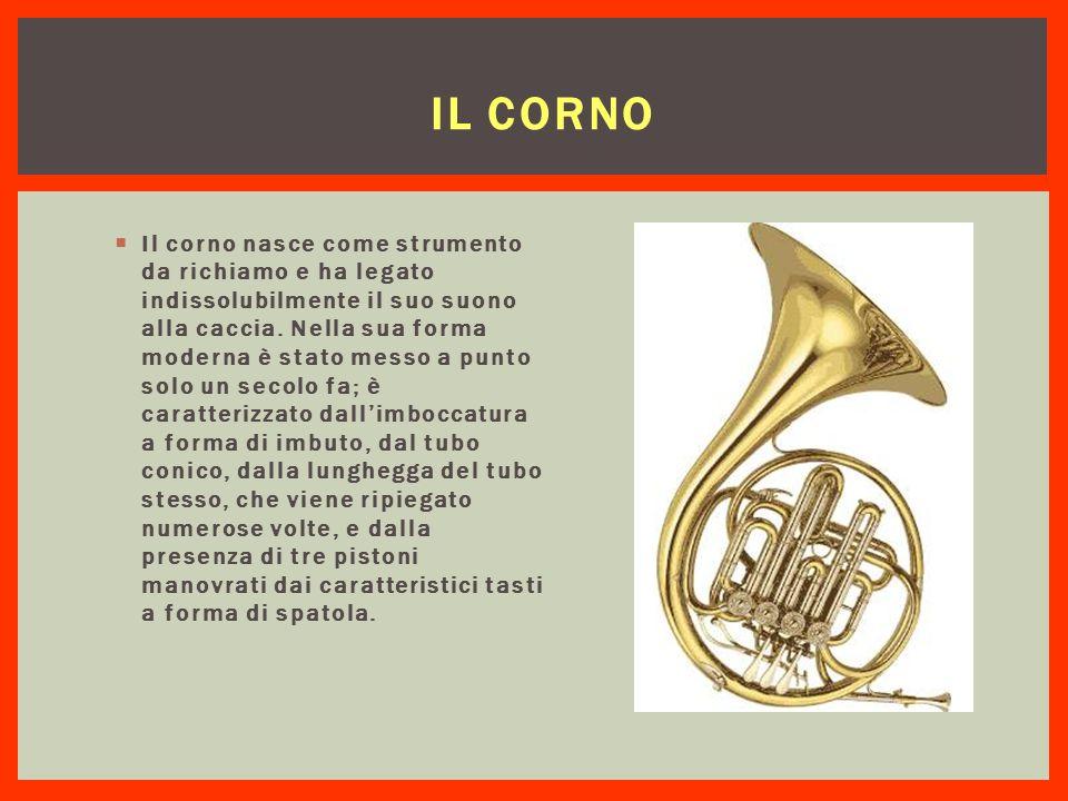 IL CORNO  Il corno nasce come strumento da richiamo e ha legato indissolubilmente il suo suono alla caccia. Nella sua forma moderna è stato messo a p