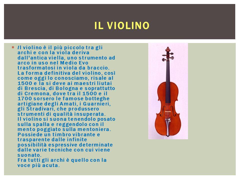 IL VIOLINO  Il violino è il più piccolo tra gli archi e con la viola deriva dall'antica viella, uno strumento ad arco in uso nel Medio Evo trasformat