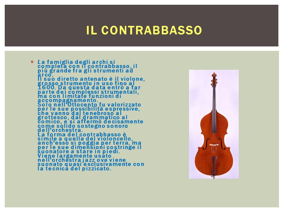 IL CONTRABBASSO  La famiglia degli archi si completa con il contrabbasso, il più grande fra gli strumenti ad arco. Il suo diretto antenato è il violo