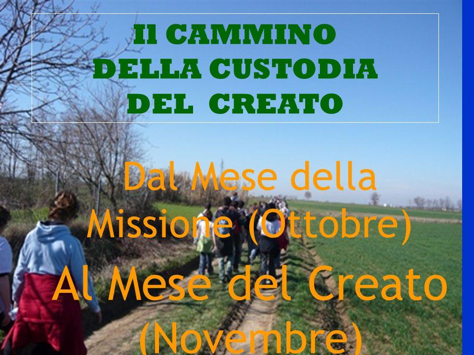 Il CAMMINO DELLA CUSTODIA DEL CREATO Dal Mese della Missione (Ottobre) Al Mese del Creato (Novembre)