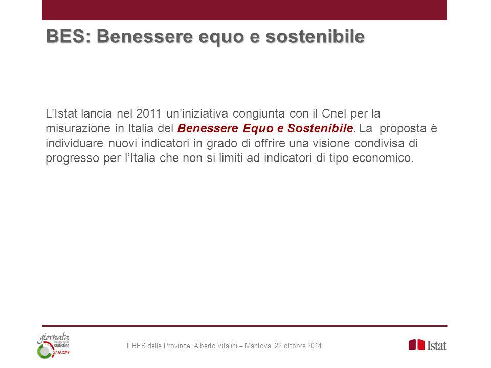 BES: Benessere equo e sostenibile L'Istat lancia nel 2011 un'iniziativa congiunta con il Cnel per la misurazione in Italia del Benessere Equo e Sostenibile.
