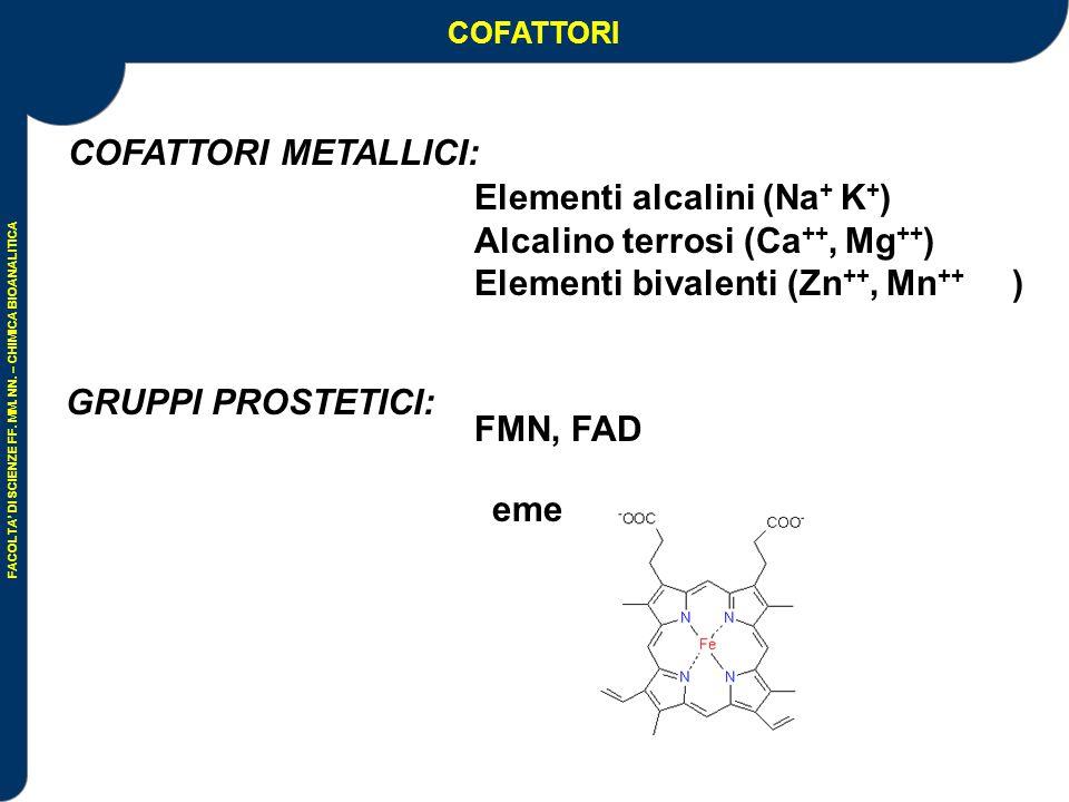 FACOLTA' DI SCIENZE FF. MM. NN. – CHIMICA BIOANALITICA VITAMINE: precursori di coenzimi COFATTORI