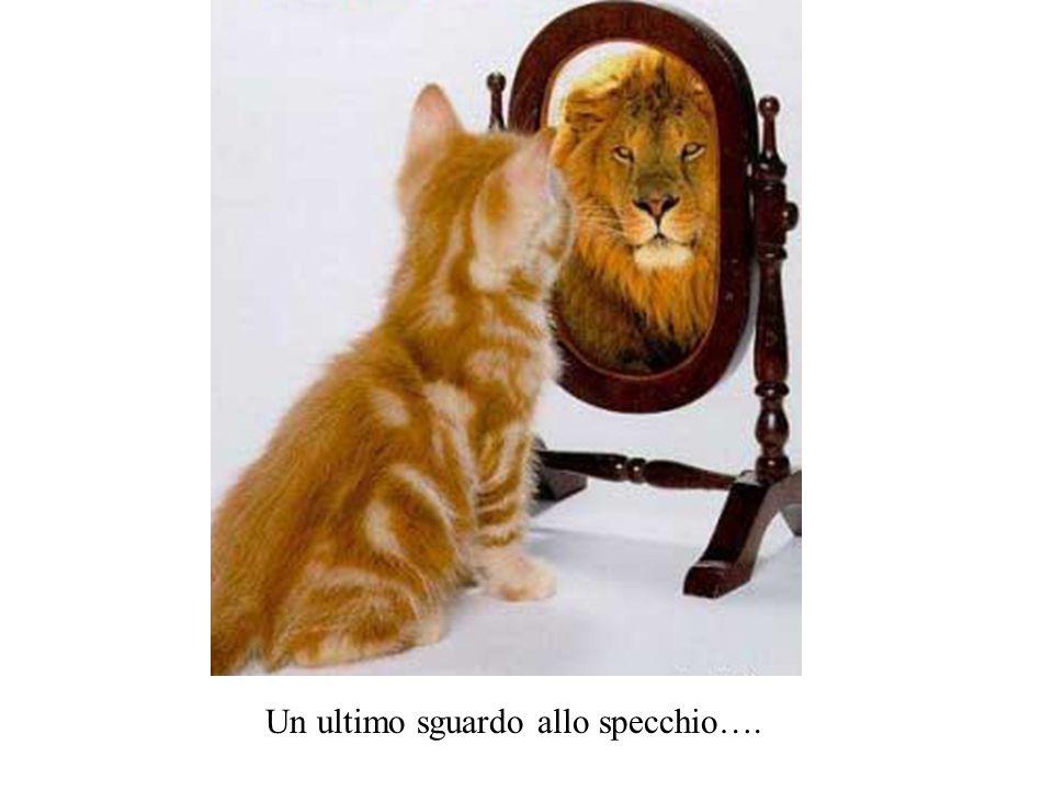 Un ultimo sguardo allo specchio….