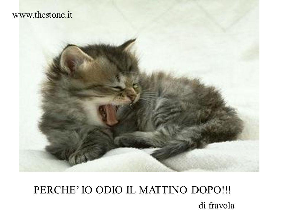 PERCHE' IO ODIO IL MATTINO DOPO!!! di fravola www.thestone.it