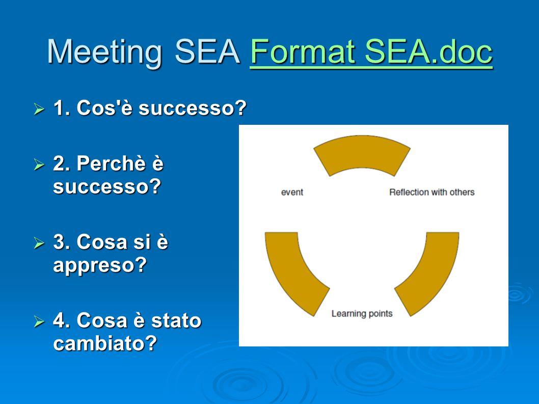 Meeting SEA Format SEA.doc Format SEA.docFormat SEA.doc  1. Cos'è successo?  2. Perchè è successo?  3. Cosa si è appreso?  4. Cosa è stato cambiat