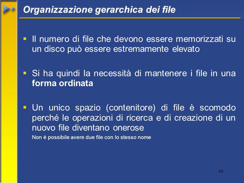 46  Il numero di file che devono essere memorizzati su un disco può essere estremamente elevato  Si ha quindi la necessità di mantenere i file in una forma ordinata  Un unico spazio (contenitore) di file è scomodo perché le operazioni di ricerca e di creazione di un nuovo file diventano onerose Non è possibile avere due file con lo stesso nome
