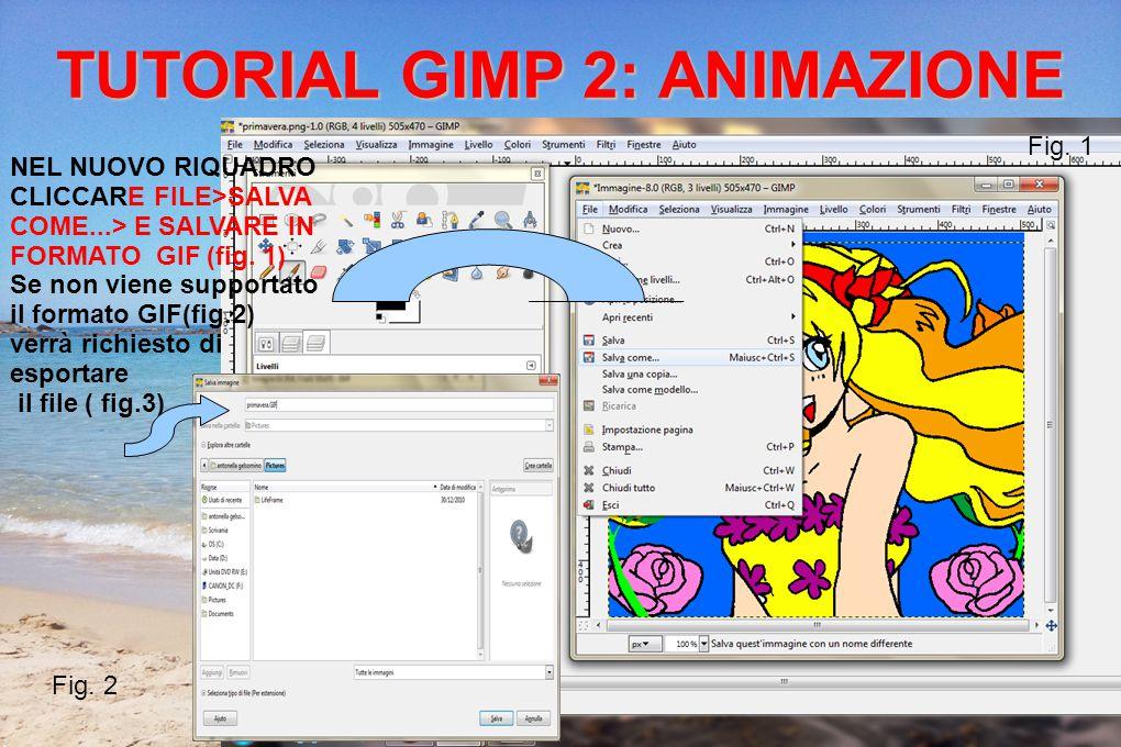 Prima di esportare clicca su > salva come animazione >esporta Il riquadro successivo ci permette di variare delle opzioni, si può rallentare l animazione o variare la disposizione del fotogramma e infine salvare TUTORIAL GIMP 2: ANIMAZIONE