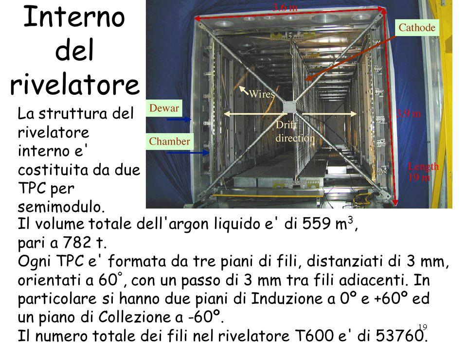 19 Interno del rivelatore La struttura del rivelatore interno e costituita da due TPC per semimodulo.
