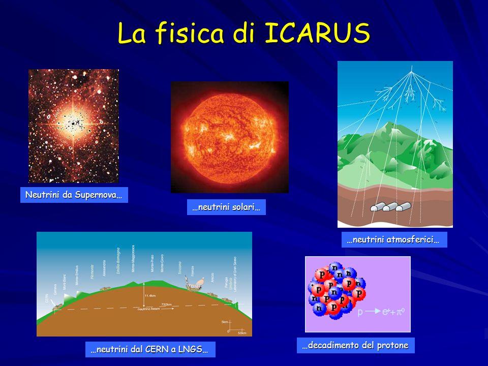 La fisica di ICARUS Neutrini da Supernova… …neutrini solari… …neutrini atmosferici… …neutrini dal CERN a LNGS… …decadimento del protone