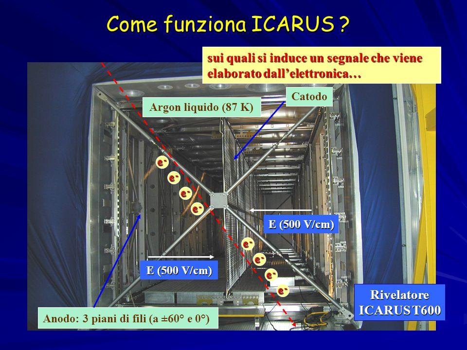 Come funziona ICARUS .